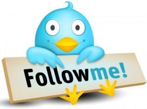 twitter seguidores