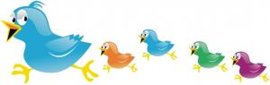 twitter-miniseguidores