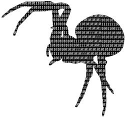 robot seo buscadores