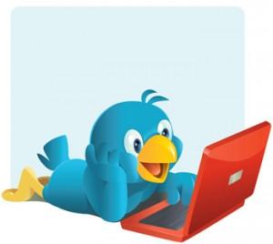twitter pajaro pc